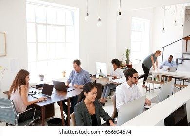 Young business colleagues working at computers in an office
