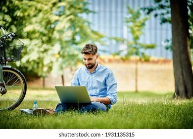 Junge Geschäftsleute, die im Park mit Laptop arbeiten
