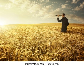 Young businessman with the spyglass in the wheat field searching for the new opportunities