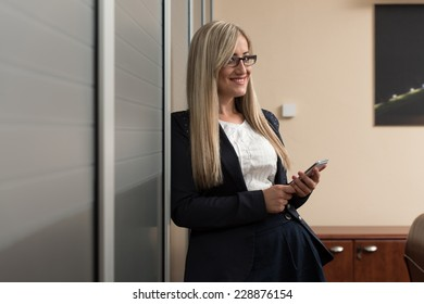 Young Businesswoman Working On The Phone