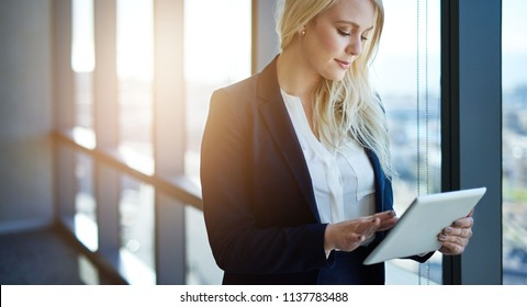 Young businesswoman working online with a digital tablet while standing in an office by windows overlooking the city
