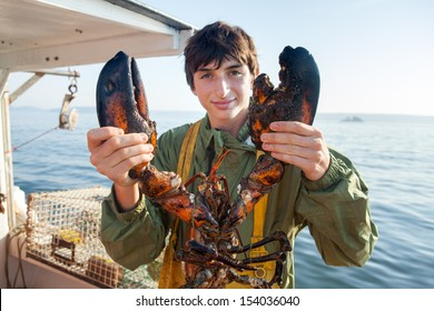 young, caucasian, brunette man holding large, weathered lobster, Maine, USA