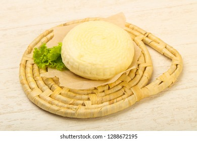 Young caucasian cheese Suluguni