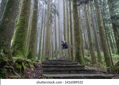 Young Caucasian Male Photographer Visit Alishan Scenic Area Taking Pictures of Forest with Mist, Haze and Fog in Taiwan