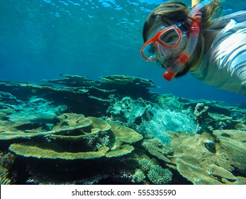 Young caucasian man snorkeling underwater on a colorful coral reef. Maldives island.