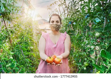 Young caucasian woman in a greenhouse picking some red tomatoes and greenery wearing a face mask. Subsistence agriculture during covid 19 confinement and empty copy space for Editor's text.