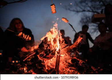 Young and cheerful friends sitting and fry marshmallows of the foreground of bonfire in the deep night on the nature