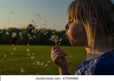 Young Child Blowing Dandylions Against Blue Background