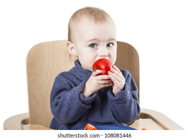 young child eating tomatoes in high chair isolated in white background