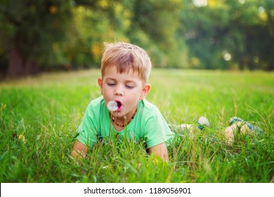 Young child preparing to blow on a dandelion