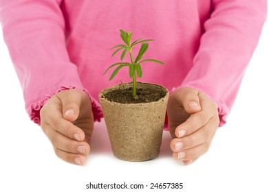 A young child protecting a plant