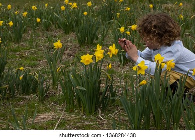 A young child is taking pictures of a flower. He is learning science in an outdoors classroom. The student is homeschooled or unschooled. The class is part of STEM and STEAM education in spring.