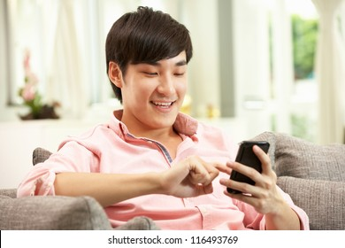 Young Chinese Man Using Mobile Phone On Sofa At Home