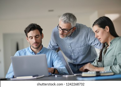 Young colleagues with older boss working with computers