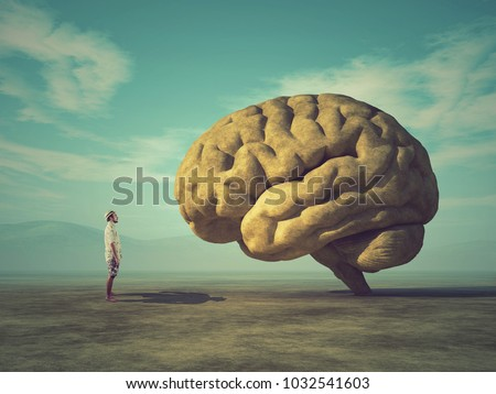 The young and conceptual image of a large stone in the shape of the human brain