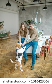 Young couple of caucasian male and female with beagle in dining room