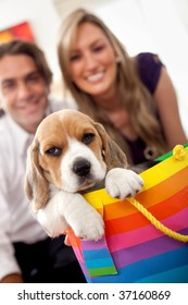 Young couple getting a puppy as a gift