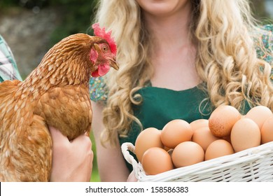 Young couple holding chicken and basket of eggs in the  garden