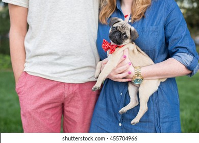 Young couple holds small pug puppy outside