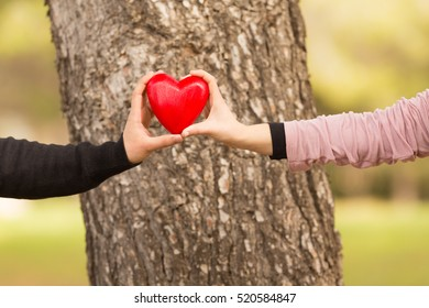 young couple lifting a heart in front of a tree in the park