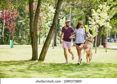 Young couple running and playing with dog outdoors in the park