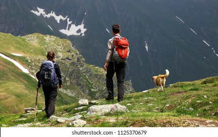 Young couple trekking with thier dog in the mountains