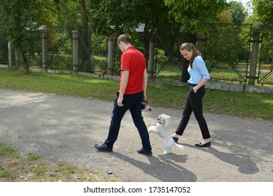 Young couple walks a white poodle toy dog on the street in Cluj-Napoca, Romania, on August 22, 2015