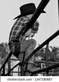 Young cowboy on a rail at a rodeo, Williamsburg, MO USA May 13, 2017