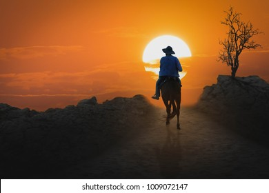 A young cowboy rides a horse down the gorge at sunrise to stand alone.