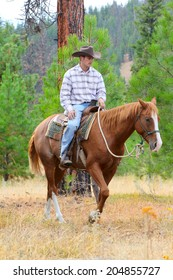 Young cowboy riding his horse in the field