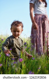Young curious boy looking at wild flowers in a field, mother looking on in the background