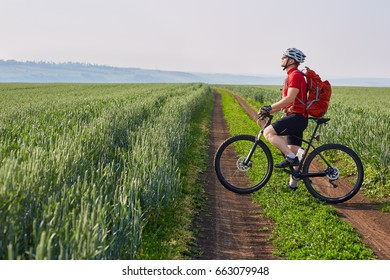 Young cyclist rides on the road in a field on a bright sunny day in the countryside.