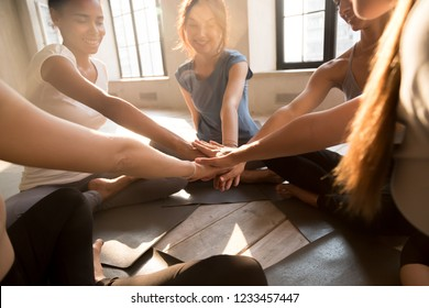 Young diverse girls start new day with sport gathered at fitness studio sitting in circle on yoga mats putting their hands together showing unity teamwork and support, sunlight through the big windows