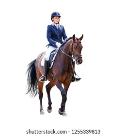 Young dressage rider woman on horse isolated on white background. Equestrian sportswoman
