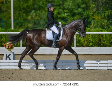 Young elegant rider woman and black horse. Beautiful girl at advanced dressage test on equestrian competition. Professional female horse rider, equine theme. Saddle, bridle, boots and other details.