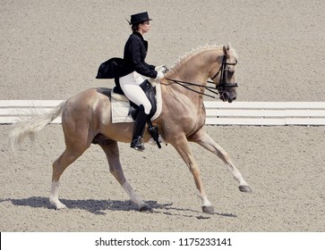 Young elegant woman and isabelline or palomino horse. Beautiful girl at advanced dressage test on equestrian competition. Professional female horse rider, equine theme.