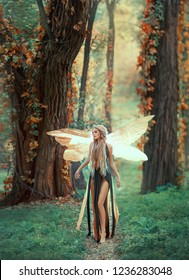 Young fairy with long hair and a long ragged dress. Sorceress in the transformation of a butterfly, with luminous wings. walking in the autumn forest. Trees are tangled with red ivy. Art photo