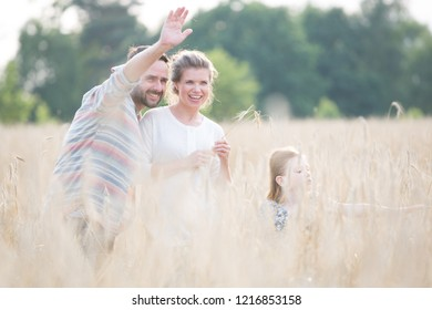 Young family walking through a field of corn on a summers day the father is waving to someone in the distance