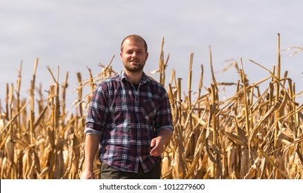 Young farmer examine corn seed in corn fields