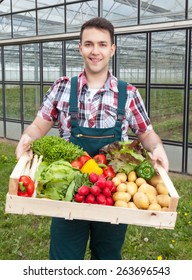 Young farmer in front of a greenhouse with vegetables