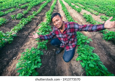 Young farmer happy and put hands up in potato fields.