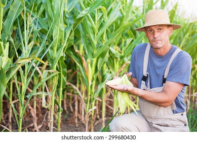 Young farmer holding an ear of corn and looking at camera in the corn field.Shallow doff, copy space