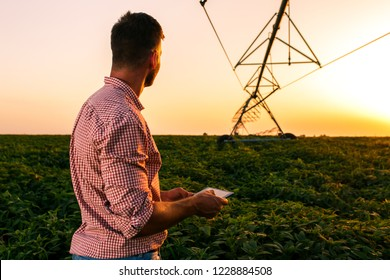 Young farmer holding tablet in his hands and adjusts irrigation system on soybean field at sunset.