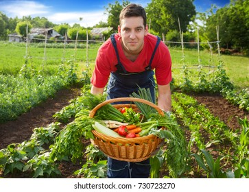 Young farmer holding wicker basket with vegetables