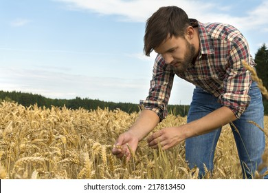 Young farmer inspecting crop, Outdoor Shot