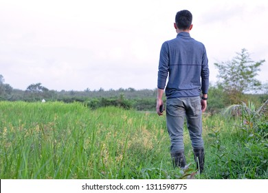 Young farmer is standing on walk path beside grass and rice field.