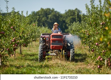 Young farmer woman driving her tractor and trailer through apple orchard