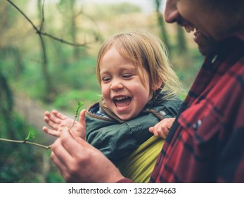 A young father and his toddler in a sling are having fun looking at buds on trees in spring
