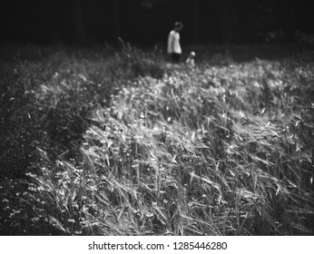 Young father and his toddler son (unrecognizable blurry people silhouettes) playing in the field. Selective focus. Parent love and care, togetherness; family relations concepts. Black and white photo.