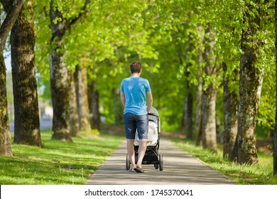 Young father pushing white baby stroller and slowly walking through alley of green trees in warm, sunny summer day. Spending time with infant and breathing fresh air. Enjoying stroll. Back view.